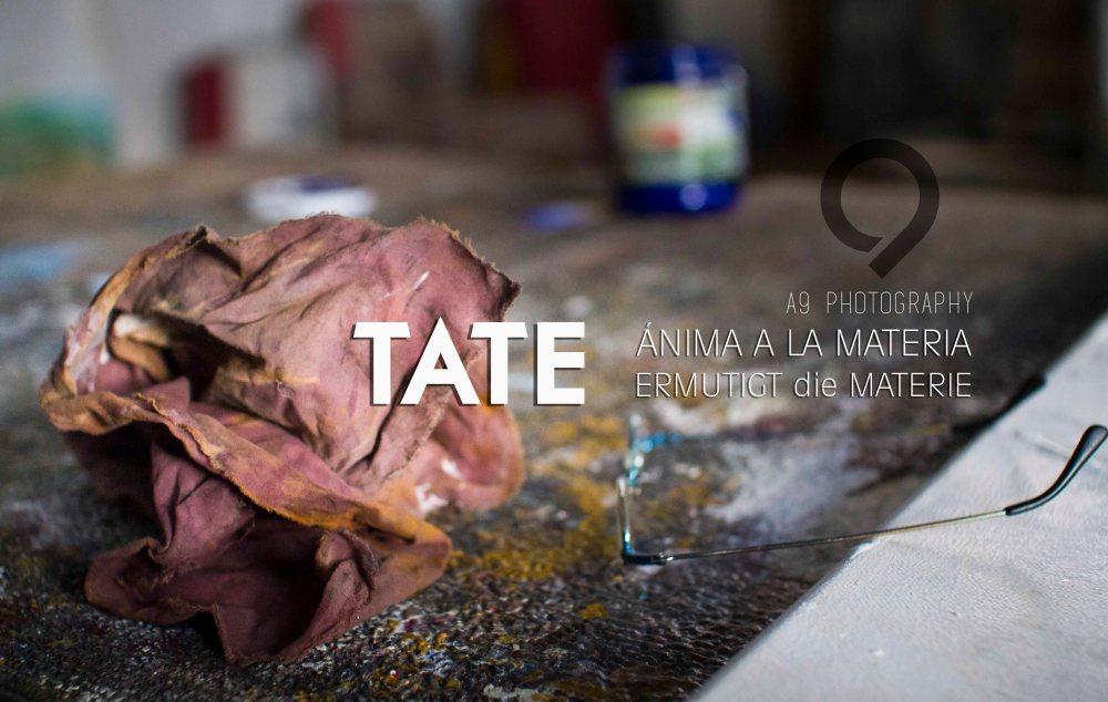 TATE - 2015-9012