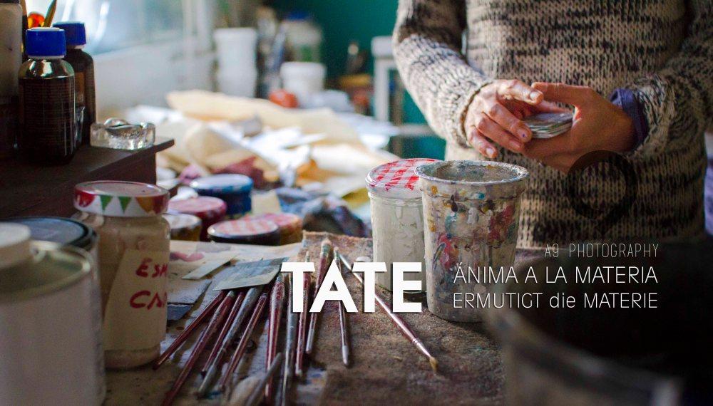 TATE - 2015-9017