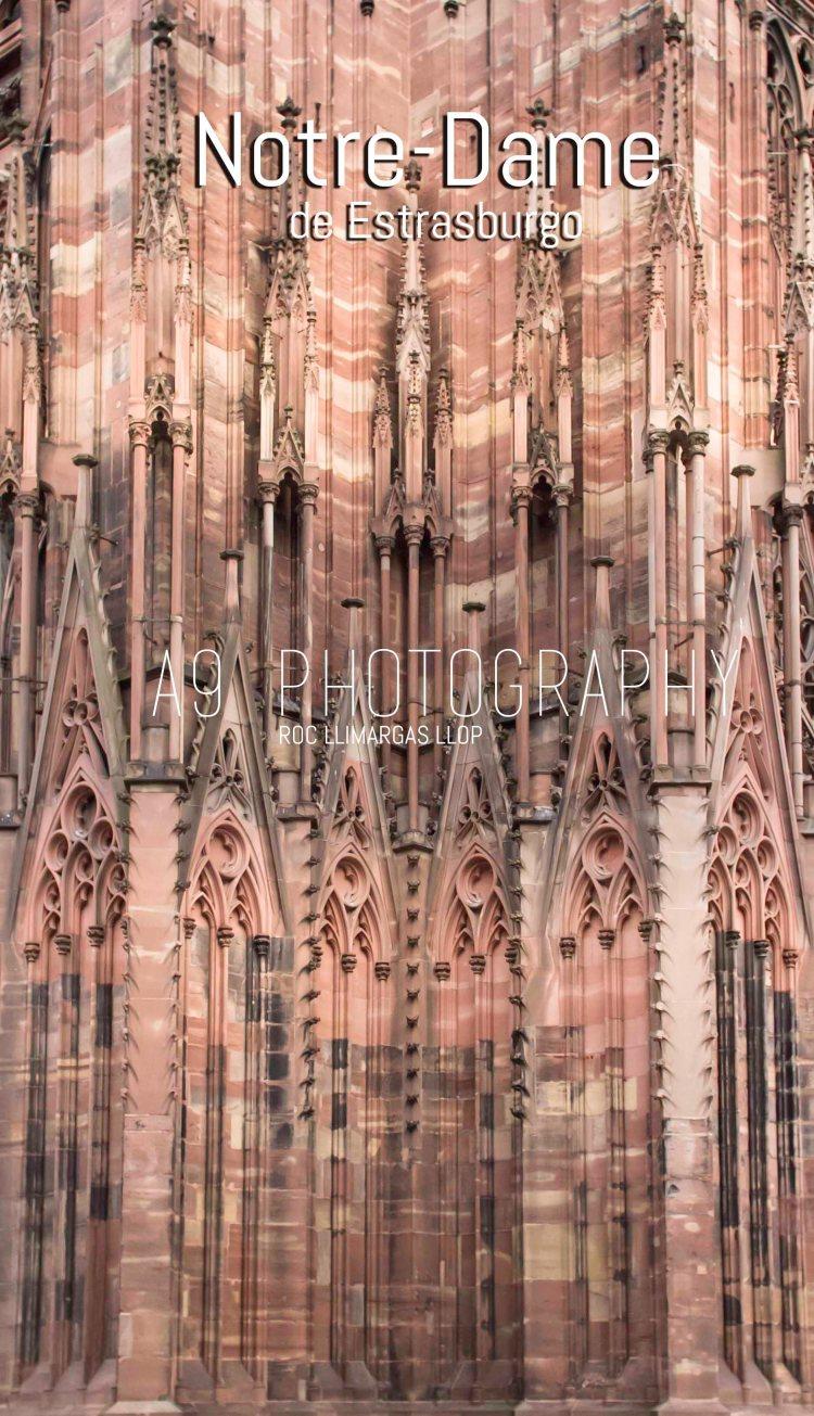 10 estrasburg-7761