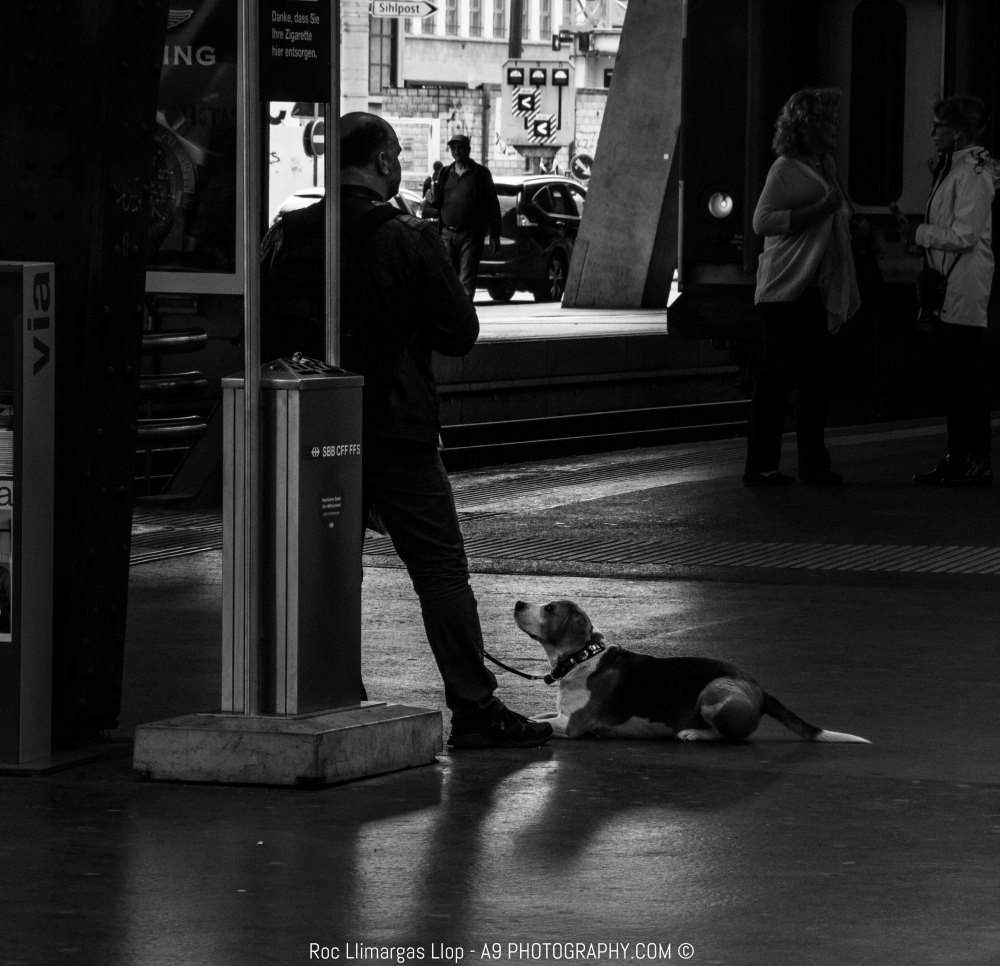 people from Zurich-0559